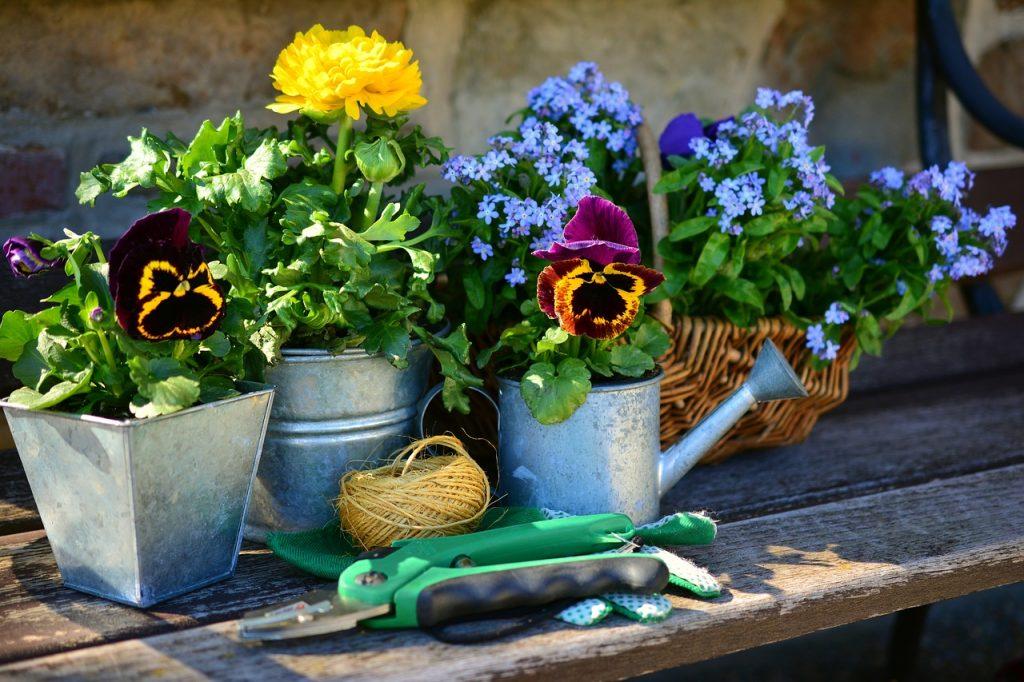 vasi  creativi piccolo giardino